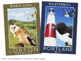 RSPB, Dorset Wildlife Trust Set of 10 poster designs